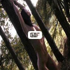 Бабу привязали к дереву и хлещут плеткой гифка